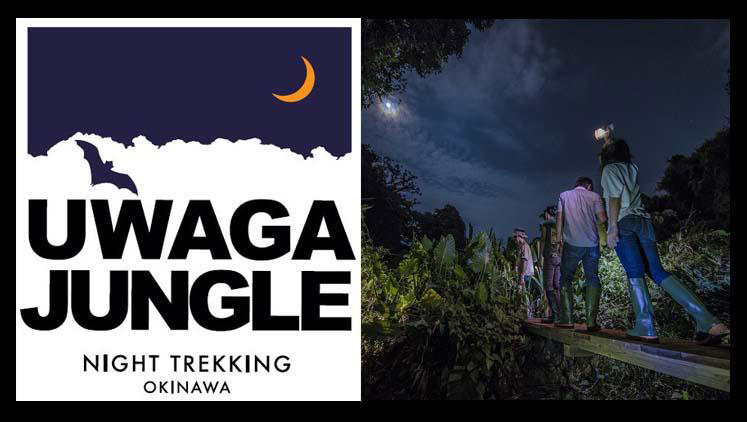 UWAGA JUNGLE banner