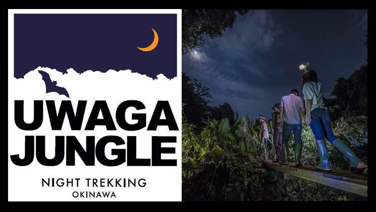 UWAGA JUNGLE banner
